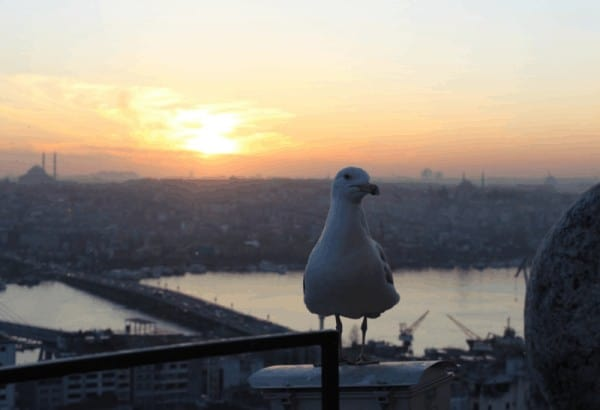Two Week Turkey Itinerary