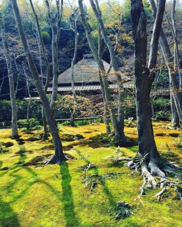 Kyoto itinerary