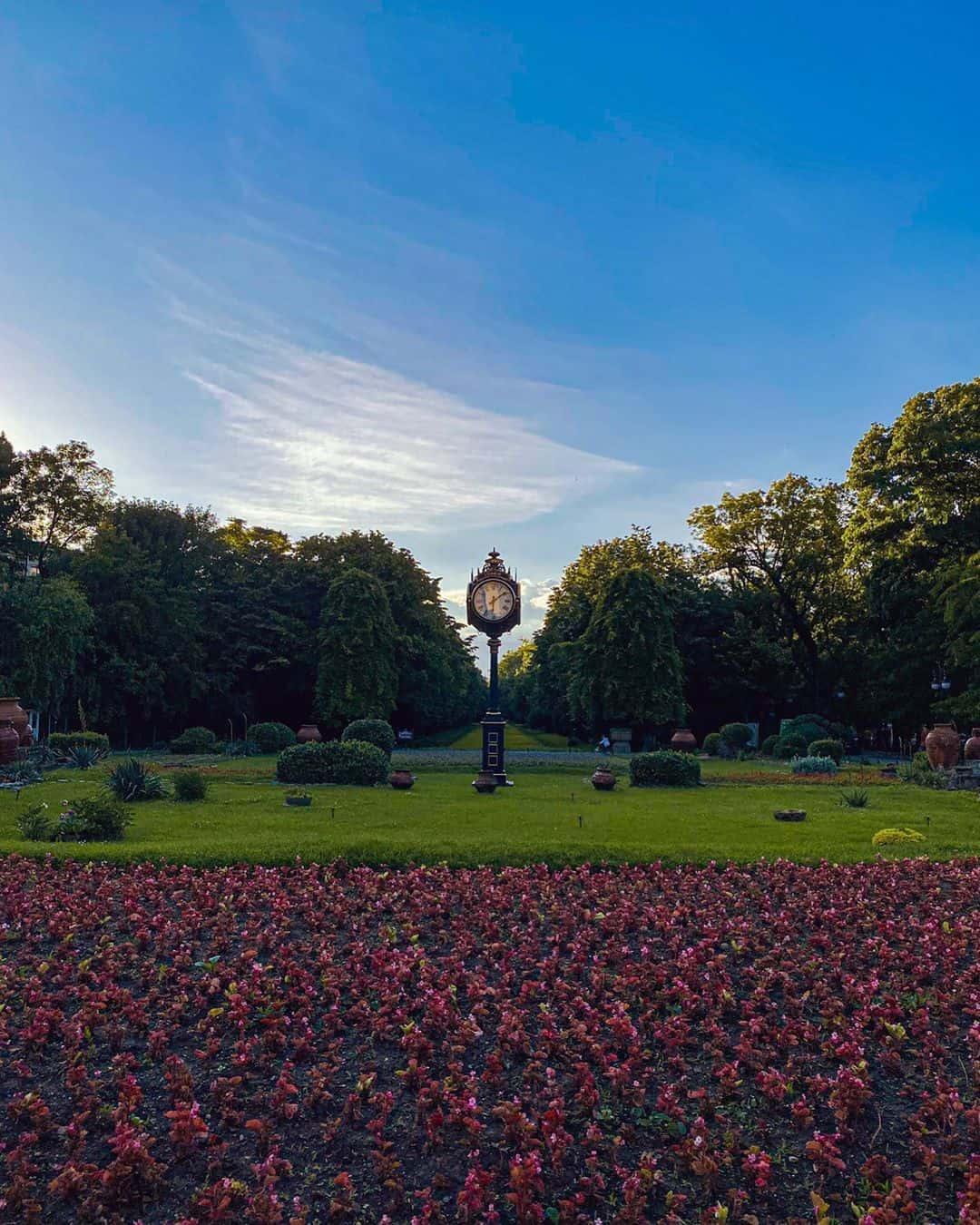 Things to do in Bucharest: Visit Cismigiu Gardens