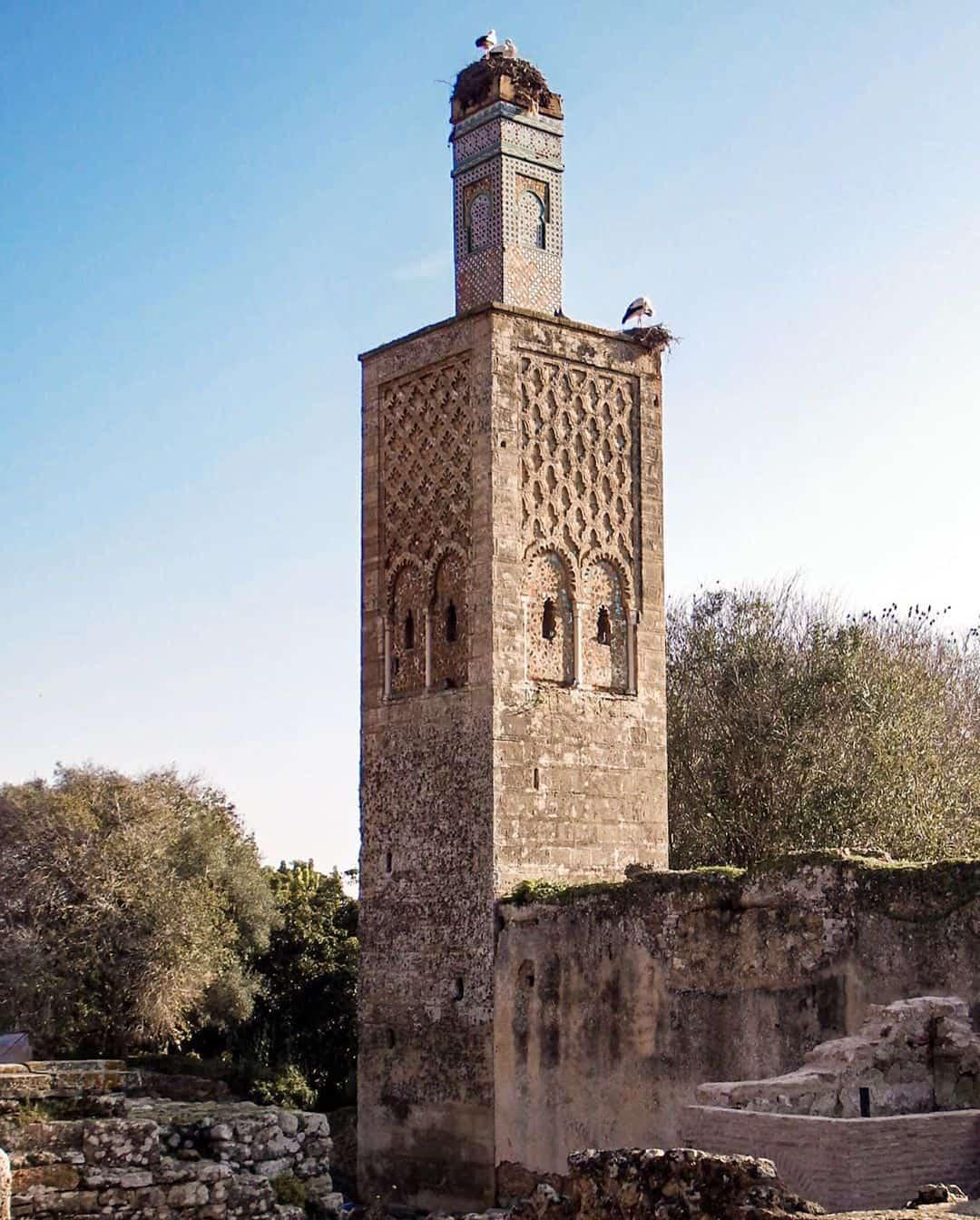 The Chellah Ruins, Rabat