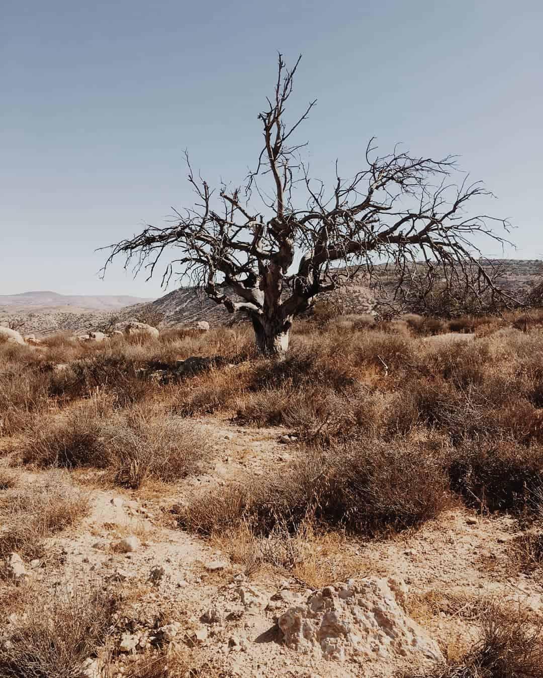 10 Day Jordan Itineray: Dana Biosphere Reserve