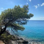 Greek Island Groups: A Local's Guide to the Greek Islands