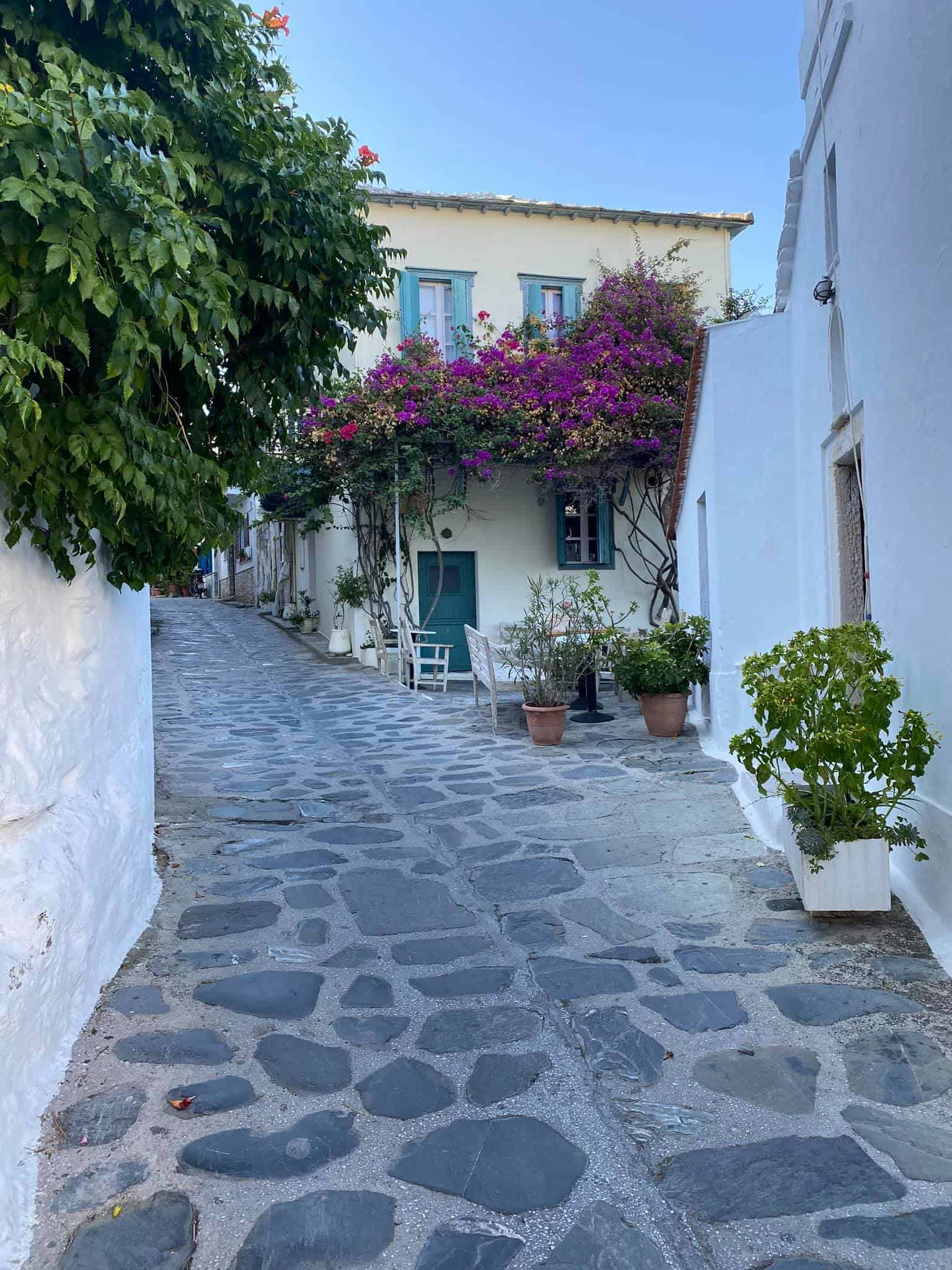 Meander through the narrow streets of Skopelos town