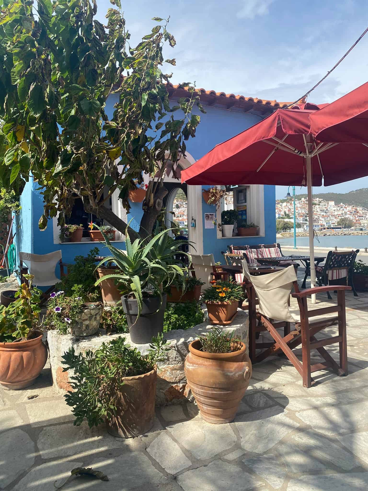 Greek Experiences: A sweet Greek coffee shop in Skopelos