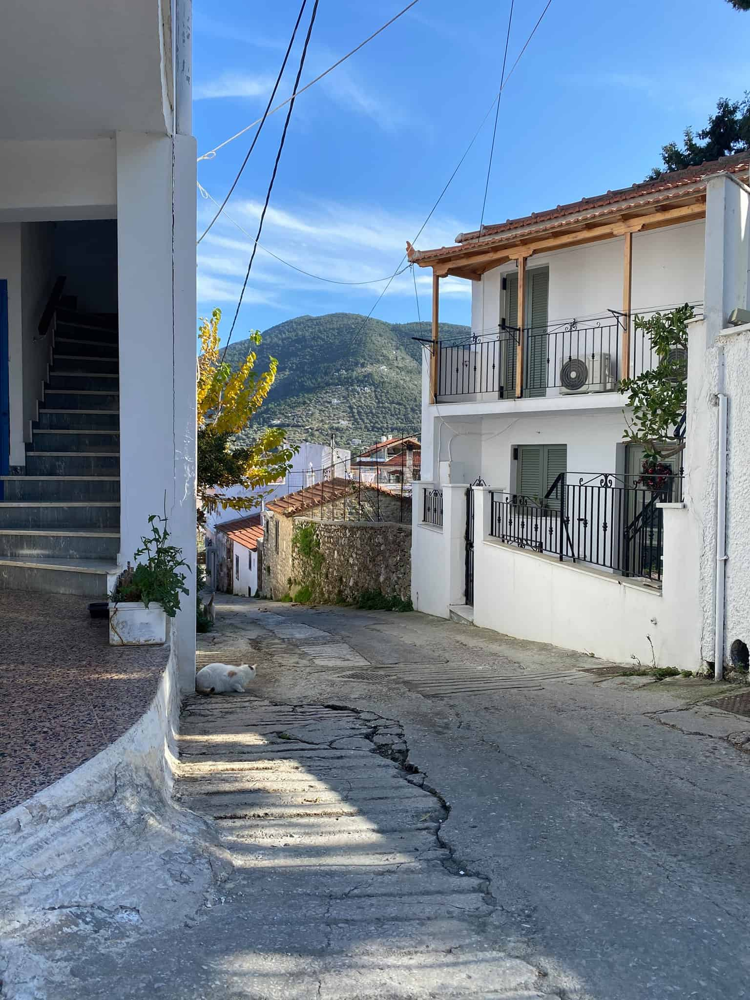 The little streets of Skopelos town