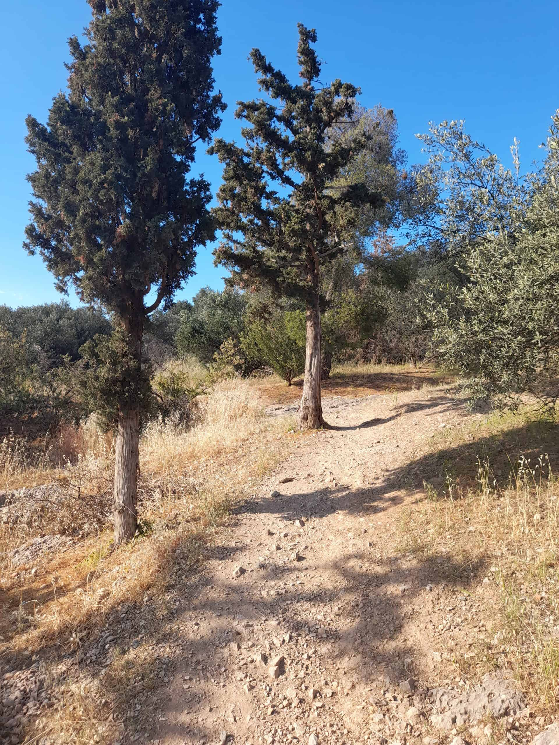 Walking in Filopappou Hill