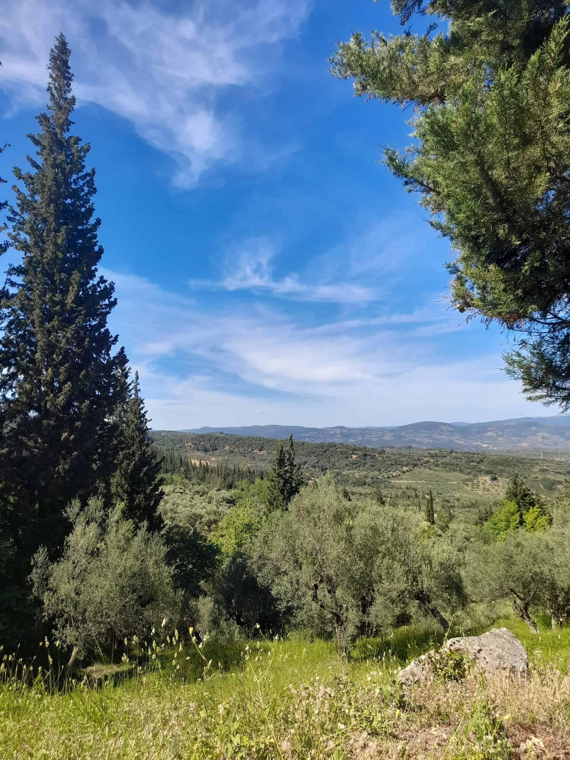 Day trips from Athens: The glorious Peloponnese